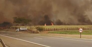 Veja vídeo de incêndios que atingem a região; várias cidades estão cobertas de fumaça e poeira