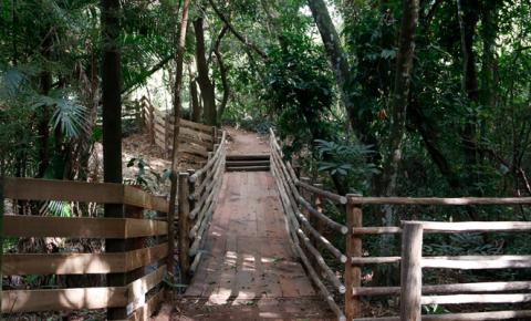 Justiça de Araraquara determina a reabertura de parques da cidade