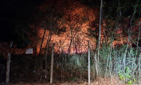 Vídeo: incêndio atinge mata próxima de residências e causa transtorno aos moradores em Matão