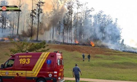 Queda de aeronave causa incêndio em Piracicaba