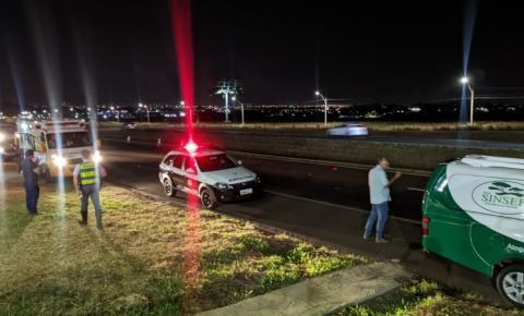 Homem morre atropelado na Rodovia Washington Luís em Araraquara
